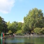 Großer Teich, Blick auf den Theodor-Heuss-Park