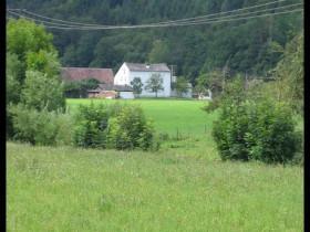 comp_Bild 086
