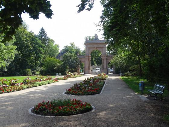 Bürgerpark Berlin-Pankow Juli 2020