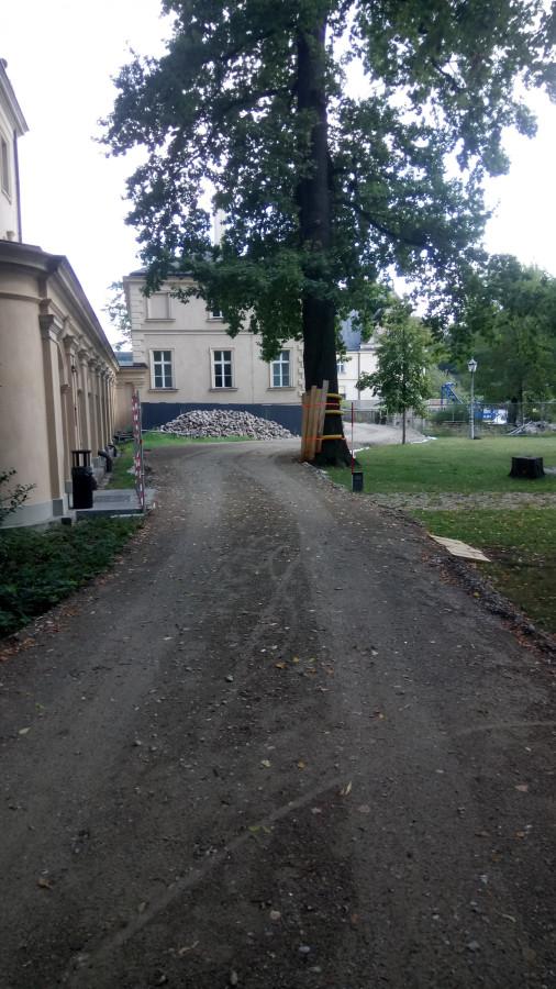 Jagdschloss Glienike (46)