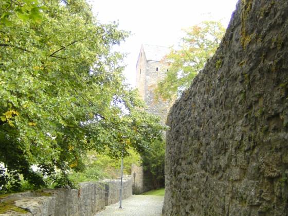 Stadtmauer (8)
