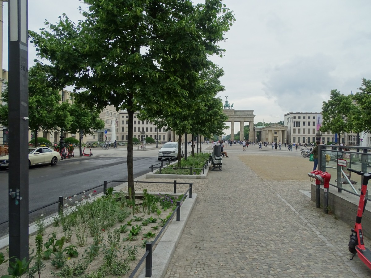 Unter den Linden, neue Beete 6-2021
