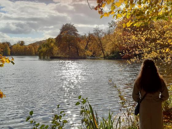 Fürstlicher Park Greiz