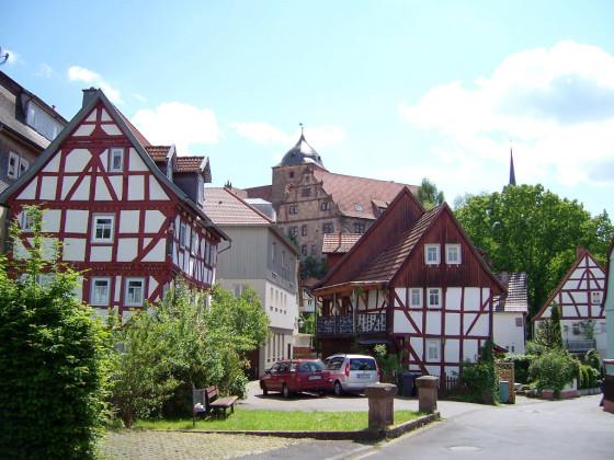 Hainbuche (5)