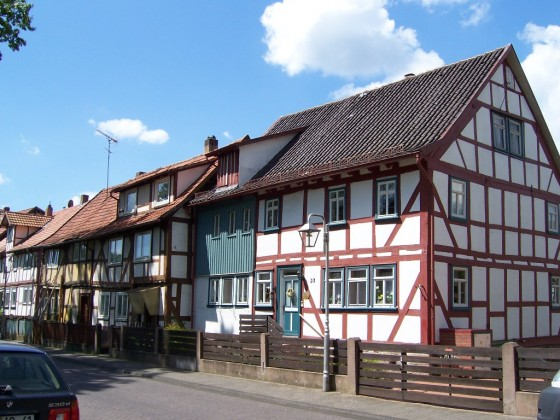 Hainbuche (2)