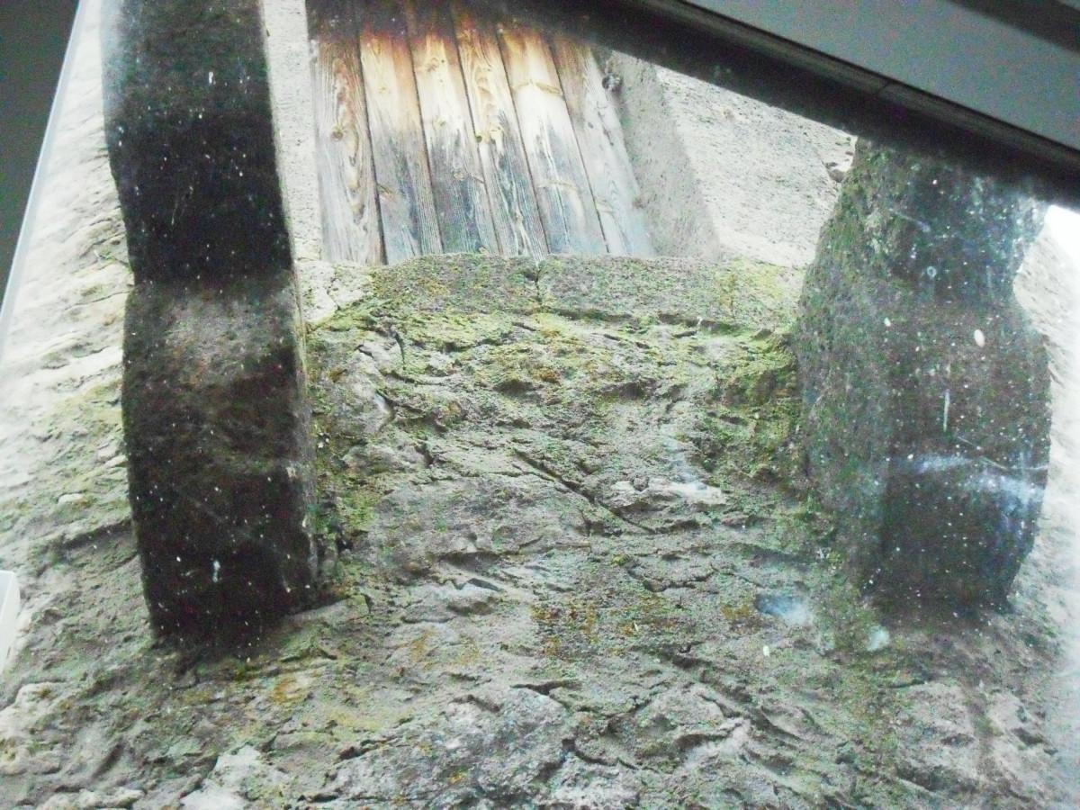 Massive Steinkonsolen vor der Tür zum Wehrgang