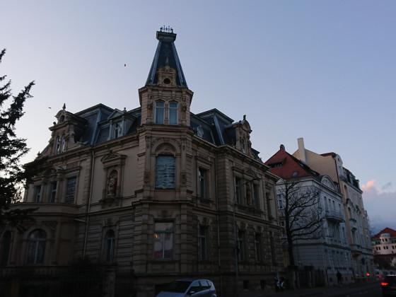 Bamberg82