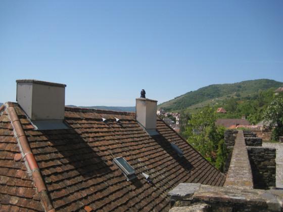 Dachziegel und Weinberge