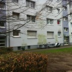 IMG_4328