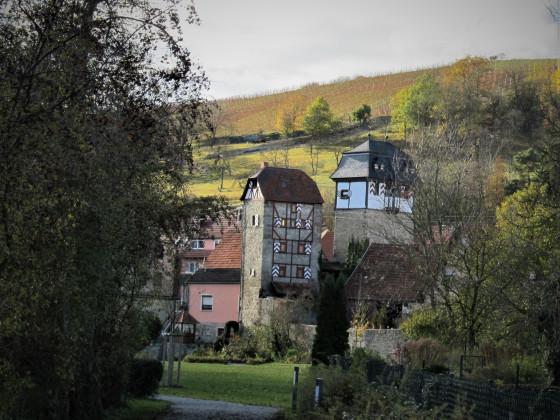 Taubergrund mit Zwillingstürmen und Weinberg ( Lage Feuerstein )