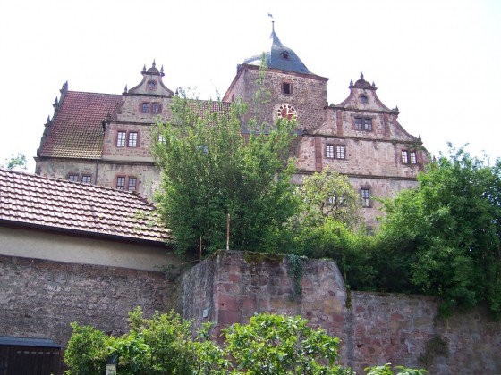 Vorderburg (1)