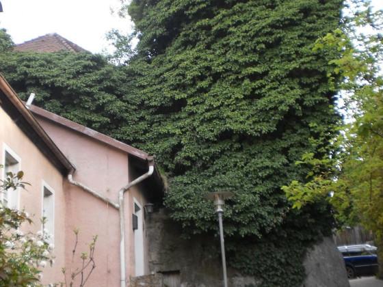 Koenigstein in der Oberpfalz