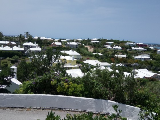 Bermuda 433