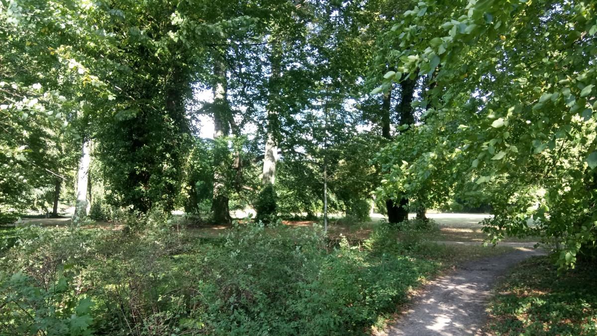 Jagdschloss Glienike (53)