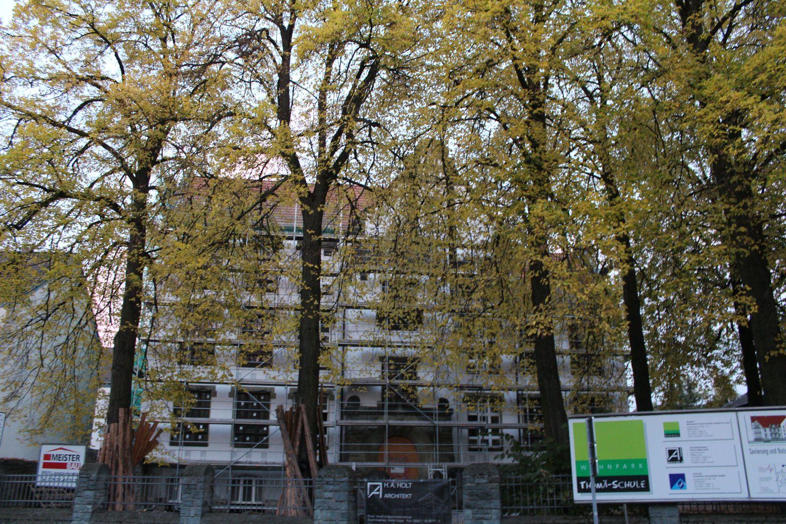 Sanierungsobjekt Thomäschule