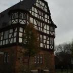 Neues Schloss (3)