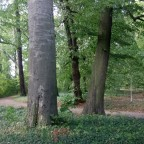 Jagdschloss Glienike (48)
