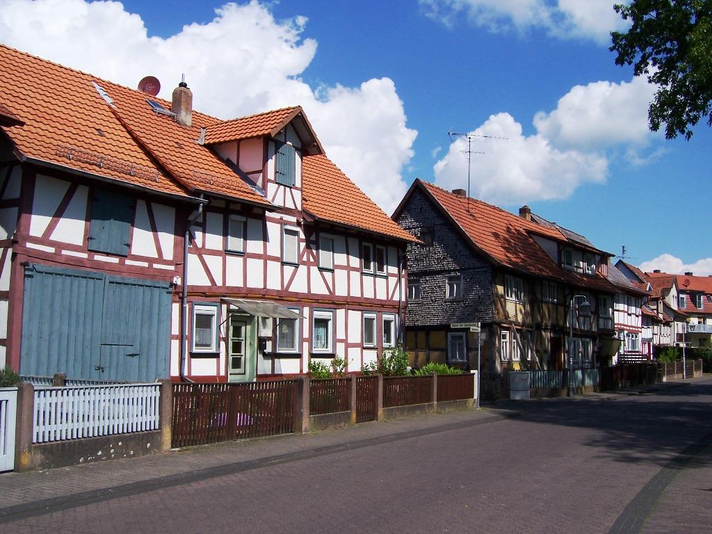Hainbuche (1)