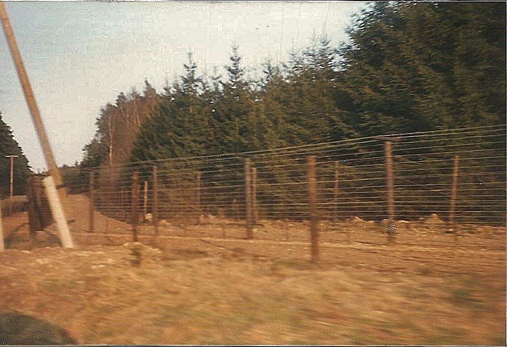 zustand ddr brd 1989